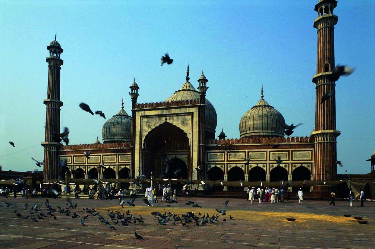 Clairy in New Delhi