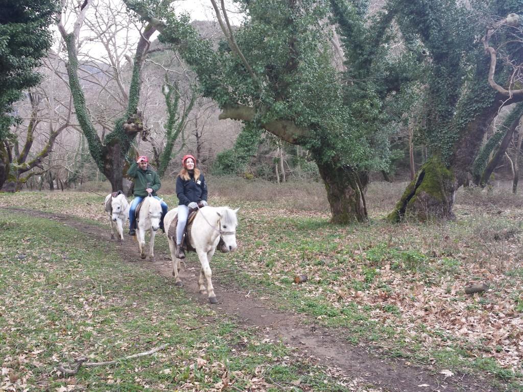 Zagori horse riding