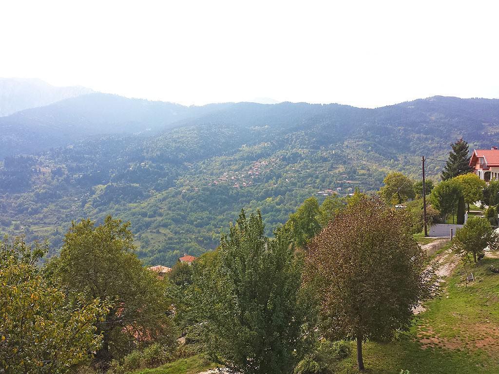 Elati view