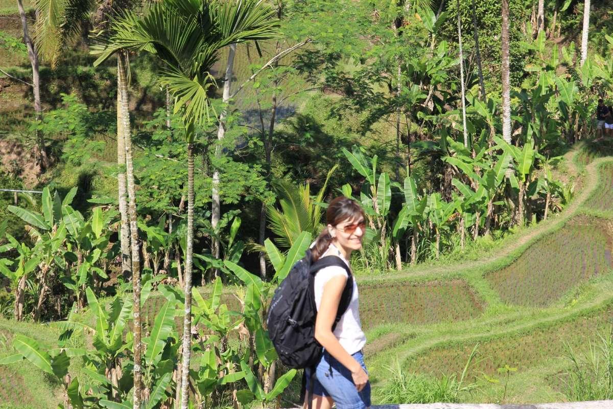 Στους Ορυζώνες της Ubud / At Ubud Rice Paddies