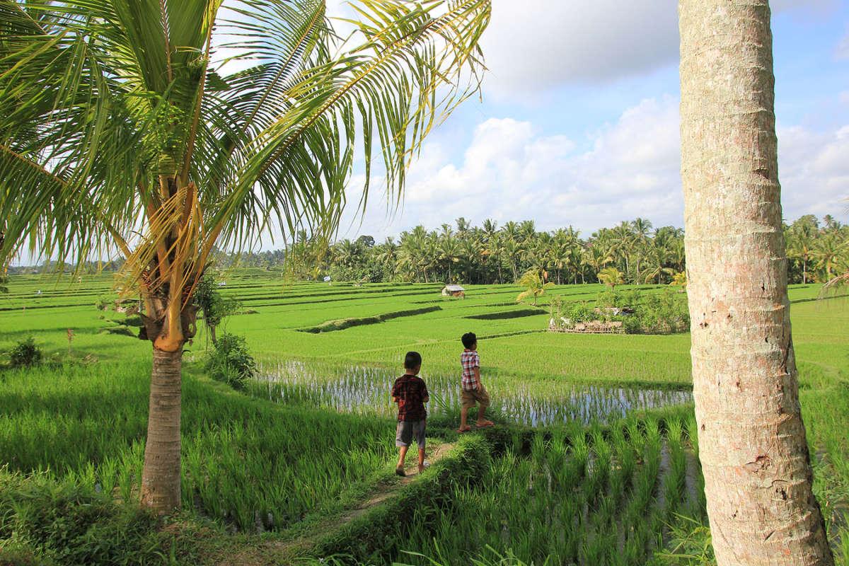 BALI_SINGAPORE_2011_08_18_0393