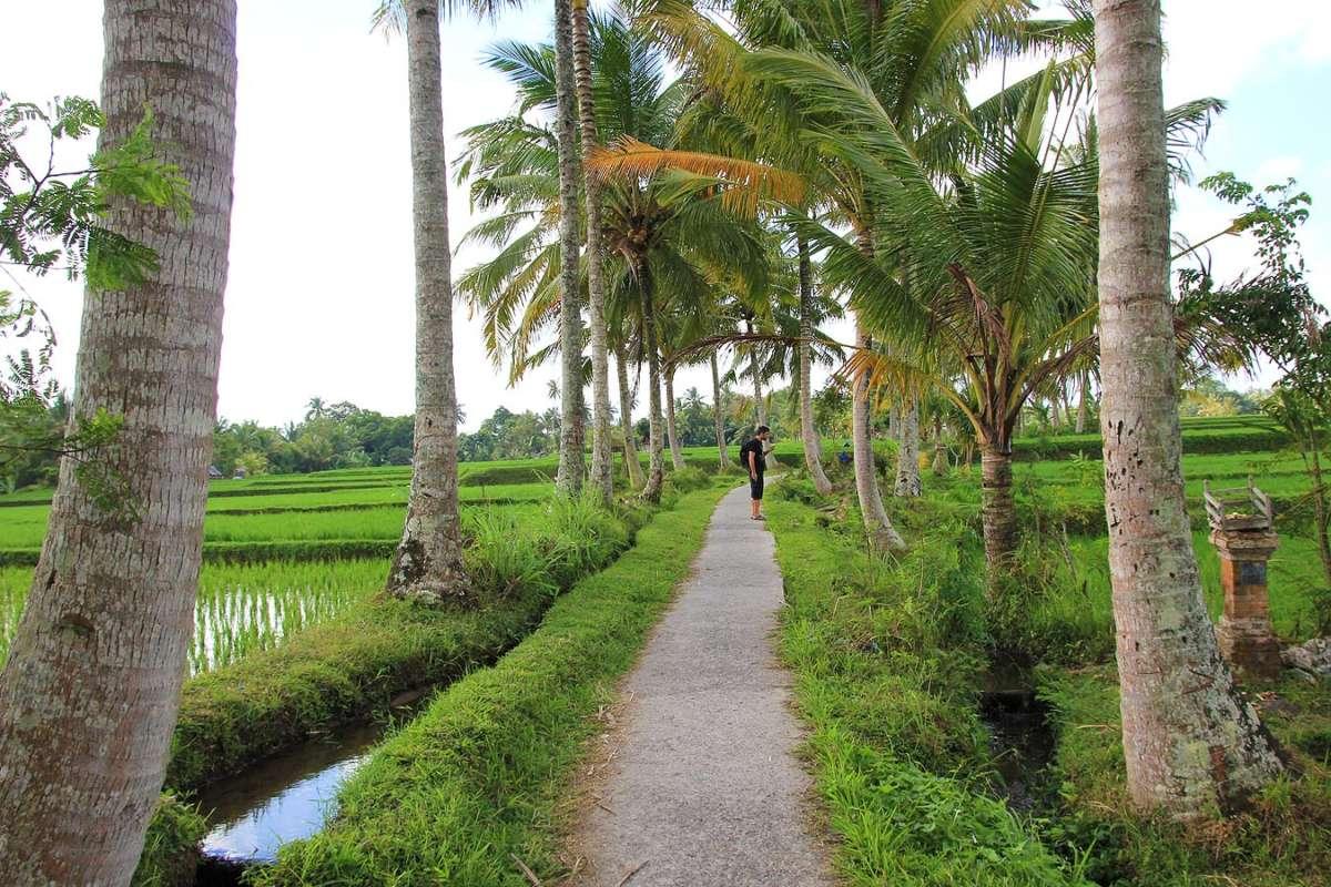 BALI_SINGAPORE_2011_08_18_0419