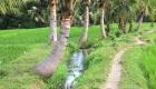 BALI_SINGAPORE_2011_08_18_0434