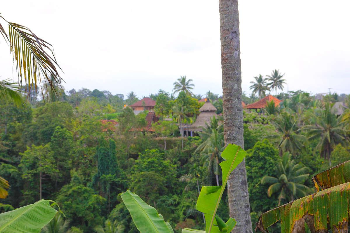 BALI_SINGAPORE_2011_08_18_0437