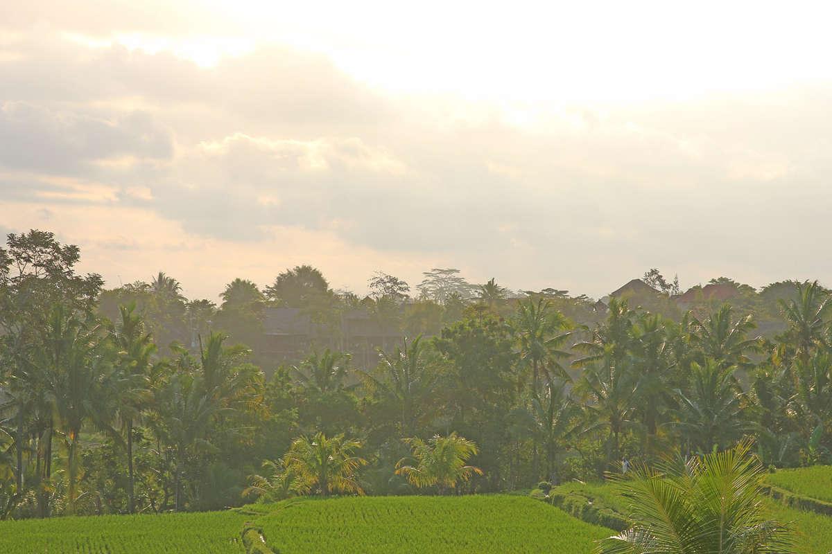 BALI_SINGAPORE_2011_08_18_0442