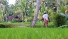 BALI_SINGAPORE_2011_08_18_0446