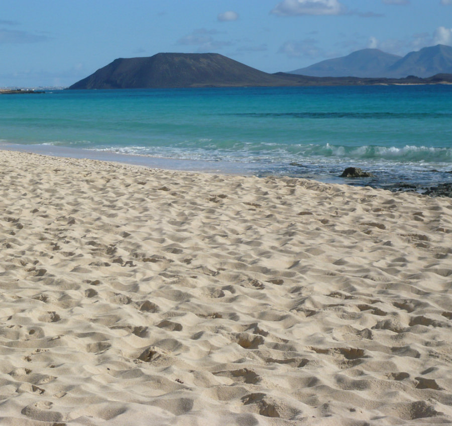 The Corralejo beach