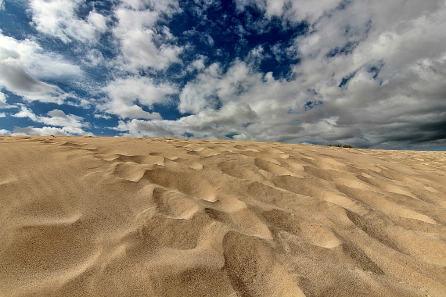 The Corralejo Dunes