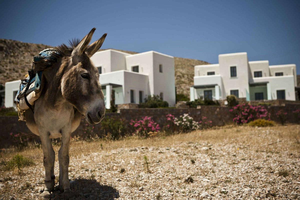Island Dreams: Folegandros & Amorgos