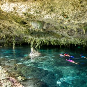 In The Cenotes of Yucatan