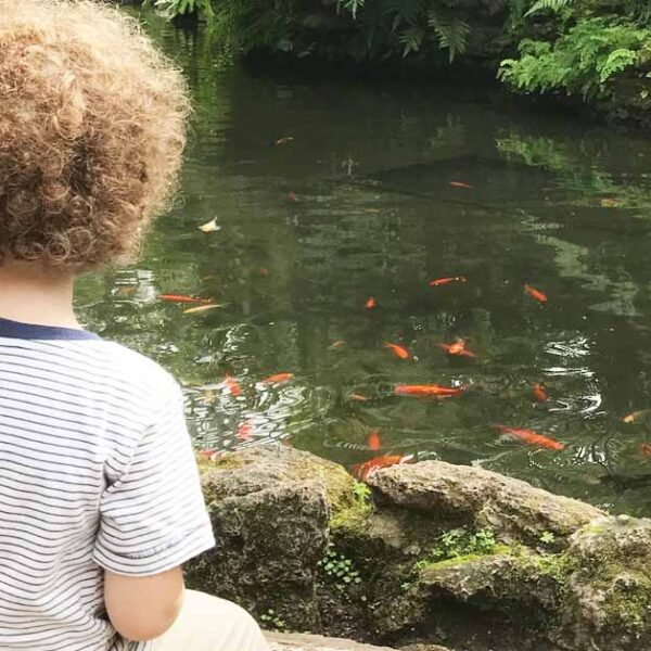 Toddler Friendly Cities: Chicago with Traveling With The Littles